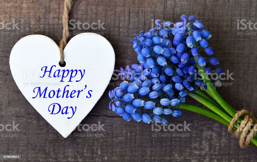 Happy Mother's Day.Blue Muscari flowers and decorative wooden heart on old wooden background.Mother's Day greeting card. stock photo