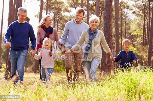 istock Happy multi-generation family walking in the countryside 486896088