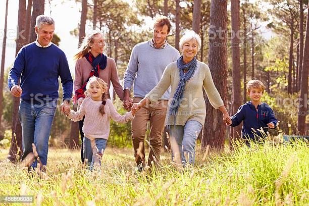 Happy Multigeneration Family Walking In The Countryside 照片檔及更多 2015年 照片