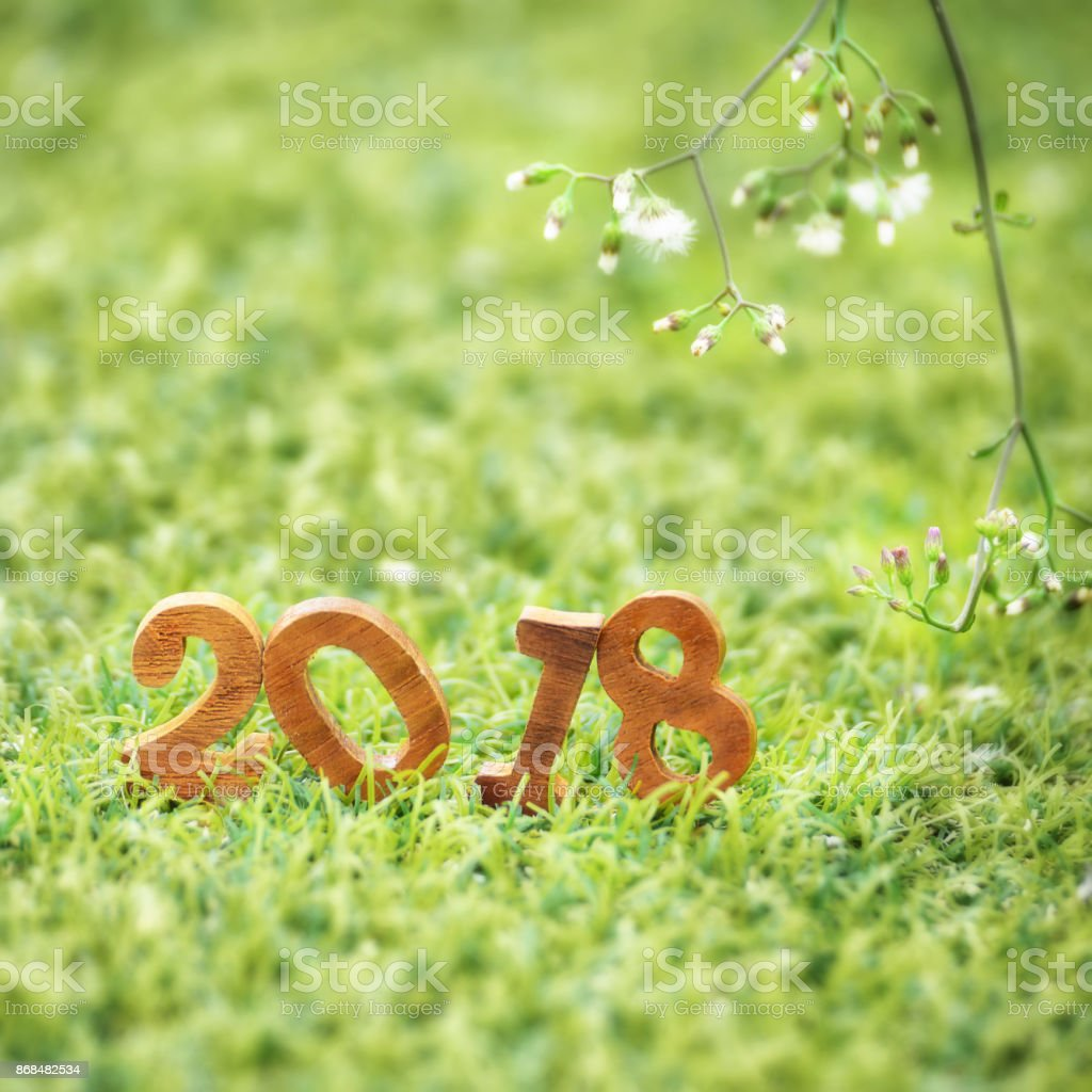 Happy New Year Nature 50