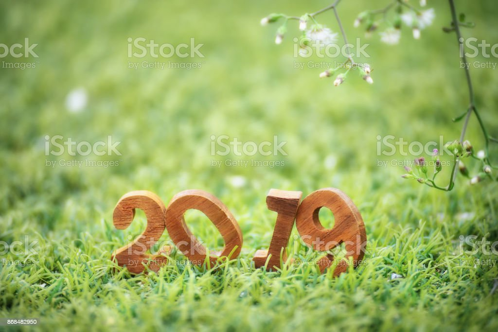 happy new year 2019 nature concept royalty free stock photo