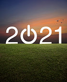 2021 start up business flat icon with green grass field over over sunset sky with birds, Happy new year 2021 concept