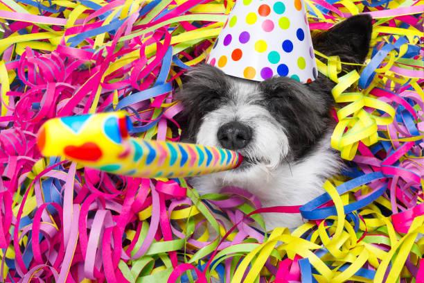 Happy new year dog celberation picture id881229520?b=1&k=6&m=881229520&s=612x612&w=0&h=tcqtoaxc8efzce2a46mbvkaxwlvlys5gm0ehg8lpig4=