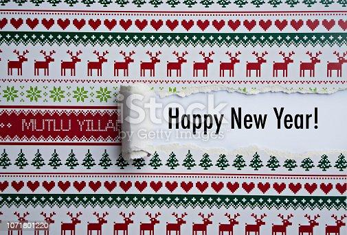 873333520 istock photo Happy new year 1071801220