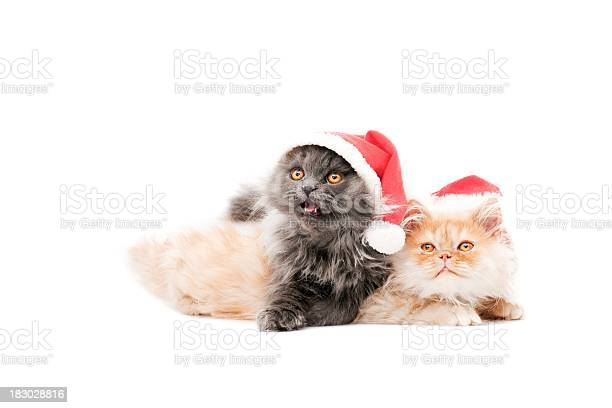 Happy new year picture id183028816?b=1&k=6&m=183028816&s=612x612&h=1z1g8u9db  mrq7lzr4e9ojb vgl1r1orguufj515sa=