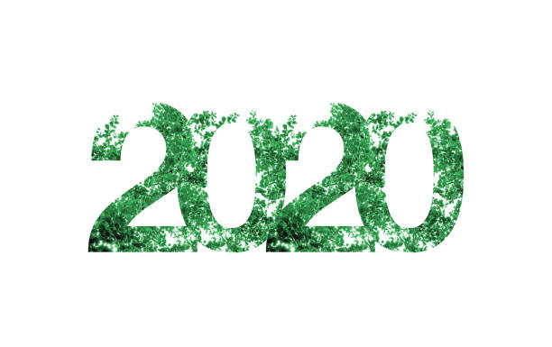 2020 happy new year with green leaf texture on white background,Nature eco concept,organic greeting card holiday.banner space for adding text stock photo