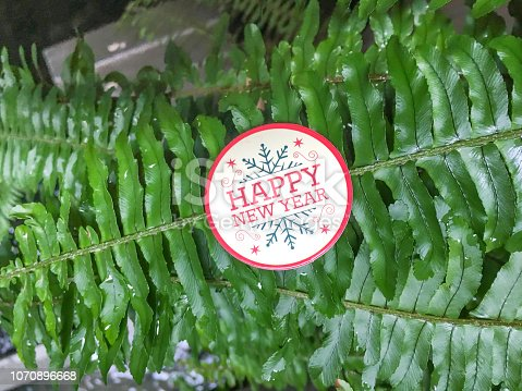 istock Happy New Year with green leaves background 1070896668