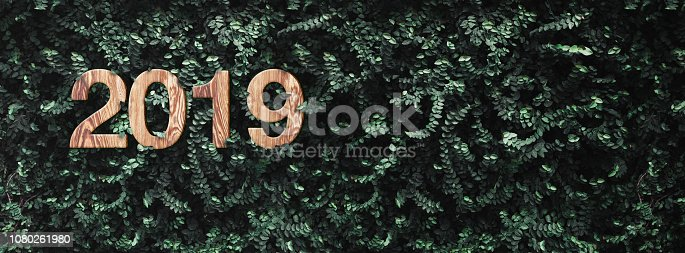 istock 2019 happy new year wood texture number on Green leaves wall background,Nature eco concept,organic greeting card holiday.banner space for adding text. 1080261980