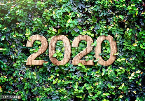 2020 happy new year wood texture number on Green leaves wall background,Nature eco concept,organic greeting card holiday.banner space for adding text