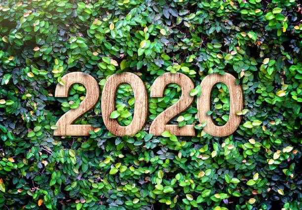 2020 happy new year wood texture number on Green leaves wall background,Nature eco concept,organic greeting card holiday.banner space for adding text stock photo