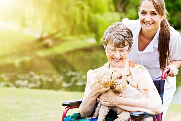 Happy old woman in wheelchair with smiling nurse and lapdog picture id488361870?b=1&k=6&m=488361870&s=612x612&w=0&h=zw4wvtaw0typa gyuujb7euycfh9tw 98drbi vyxws=