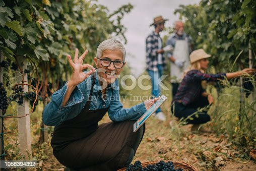 1063236916 istock photo Happy old woman with digital tablet at vineyard 1058394392