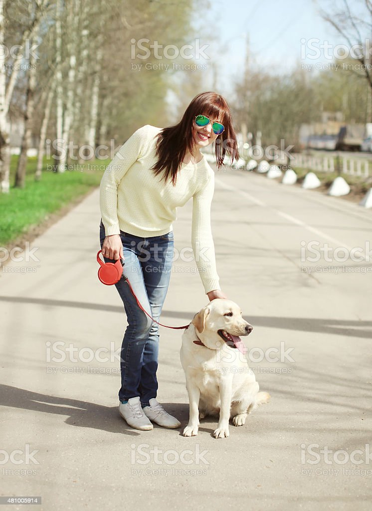 Happy owner and labrador retriever dog outdoors walking in summe stock photo