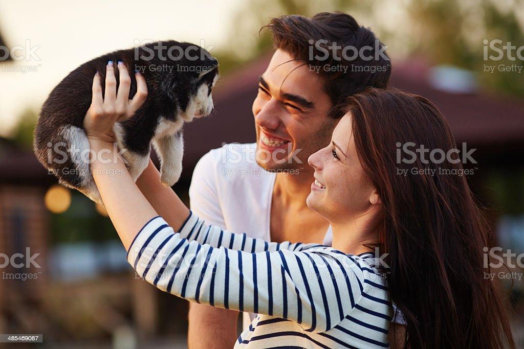 Happy couple holding tiny husky puppy