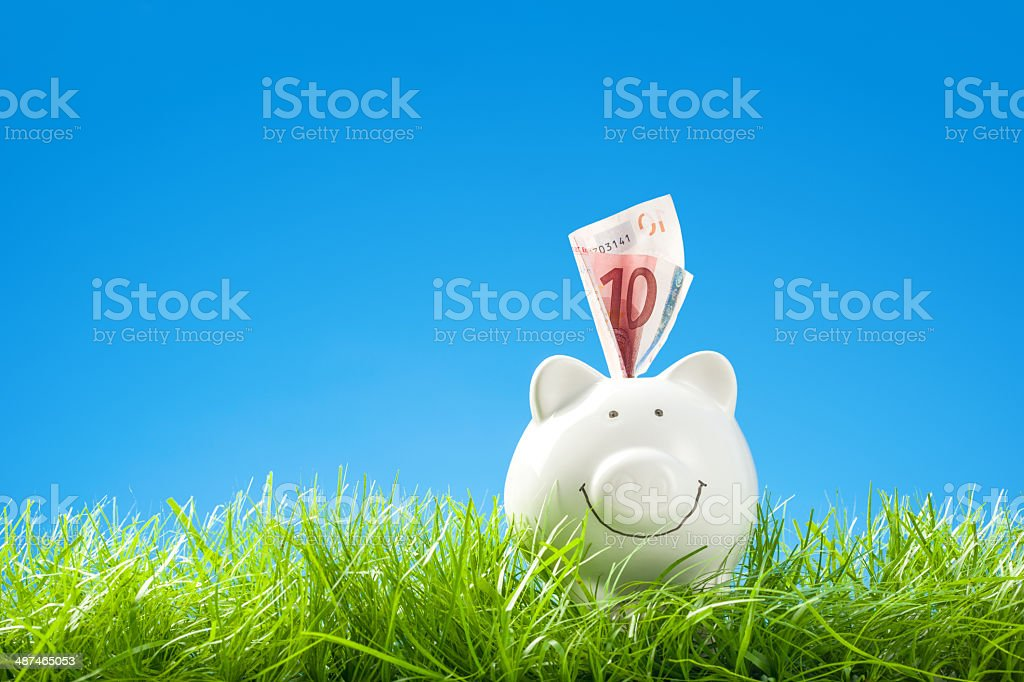 Happy Piggy Bank with Banknote in Grass, Blue Sky stock photo