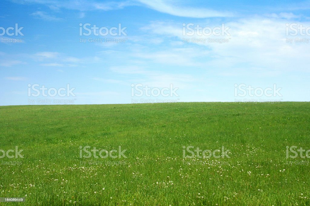 Happy Place royalty-free stock photo