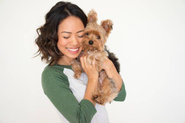 heureuse jolie femme embrassant yorkshire terrier - femme seule s'enlacer photos et images de collection