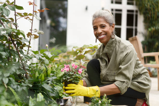 Happy retired senior woman gardening in back yard Happy retired female gardening in back yard. Smiling senior woman is crouching by plants. She is in casuals. gardening stock pictures, royalty-free photos & images