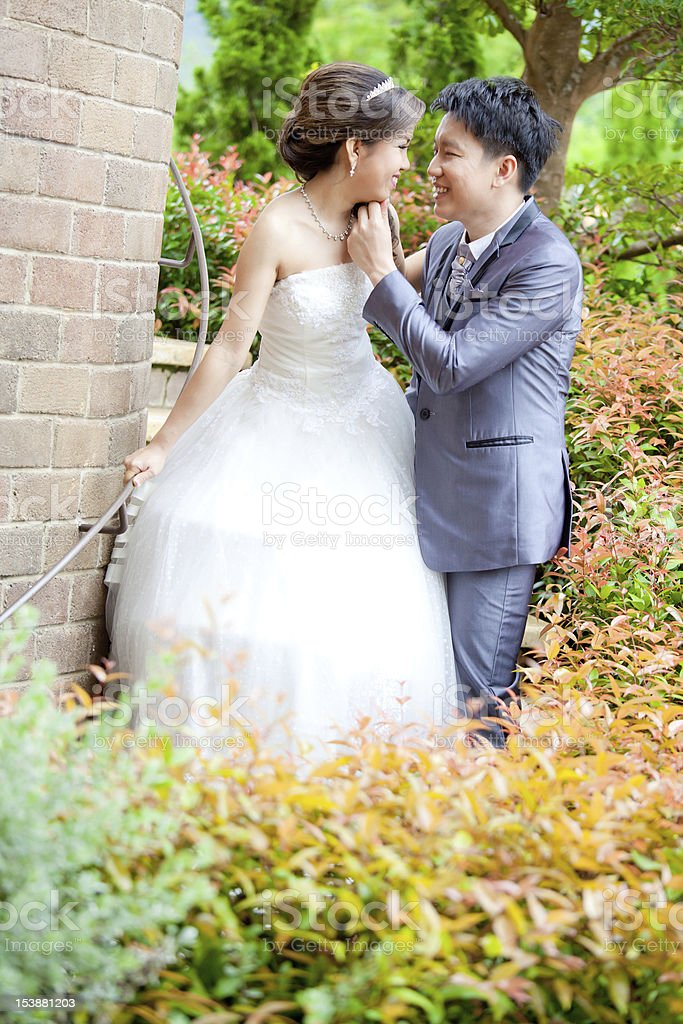 Happy Romantic Newlyweds Couples royalty-free stock photo
