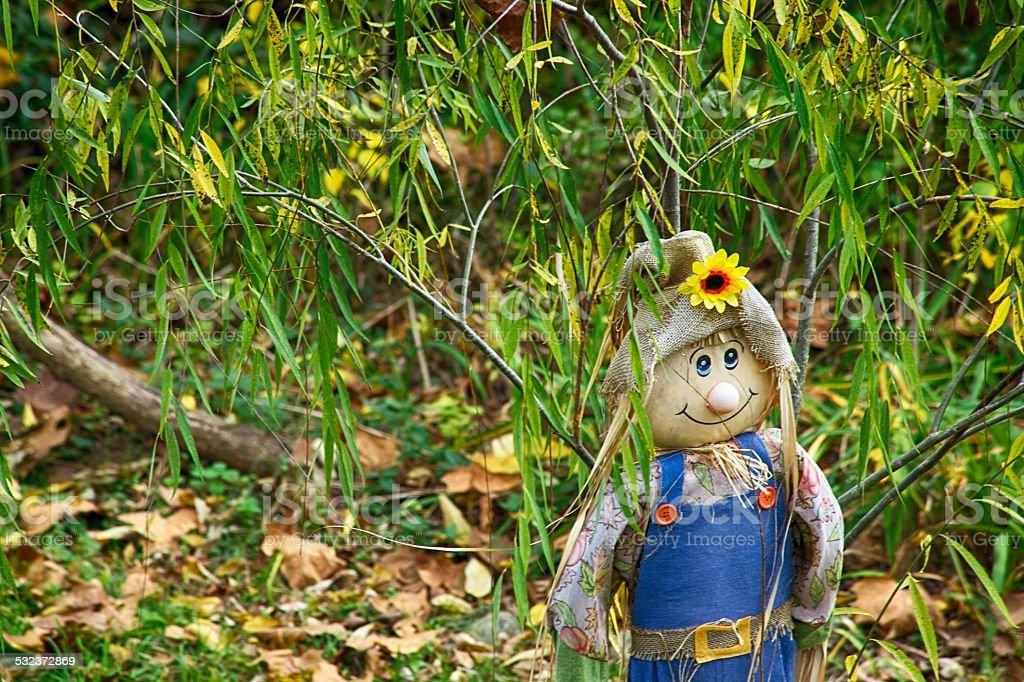 Happy Scarecrow stock photo