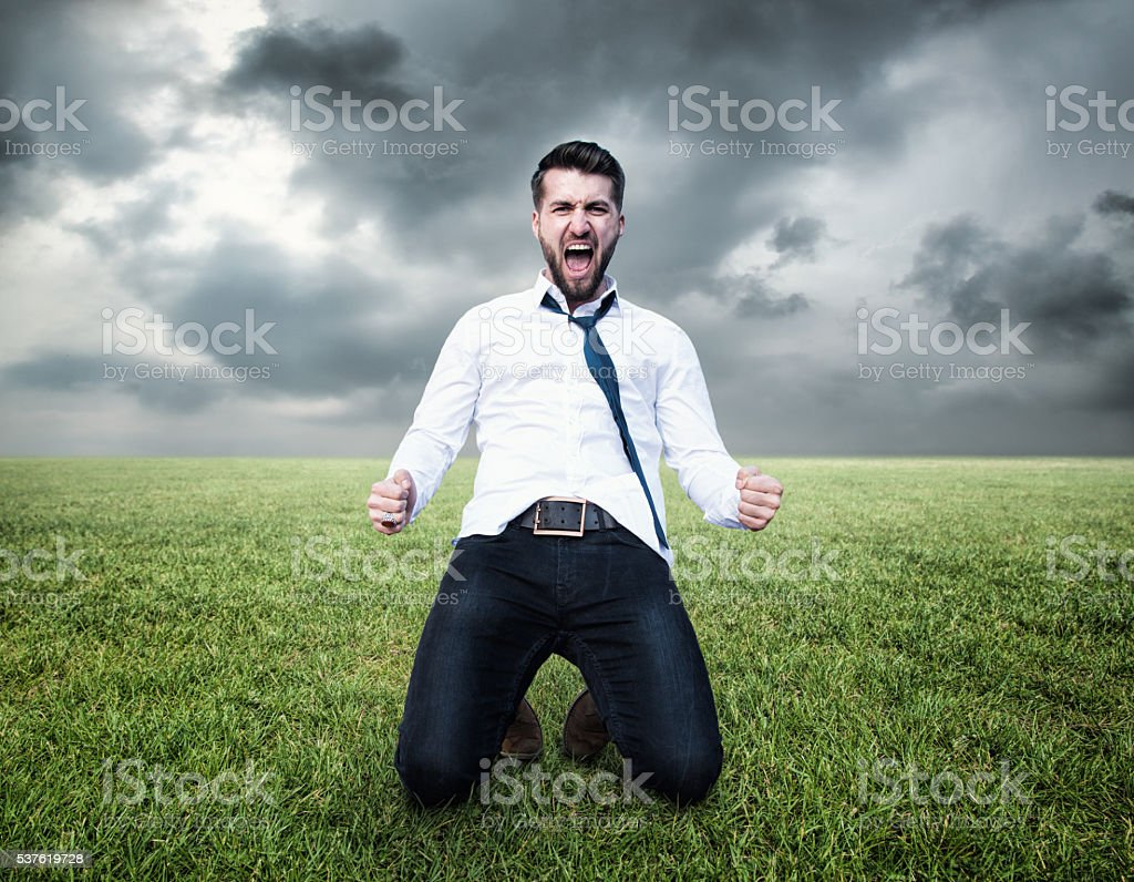 Happy screaming business man on the lawn stock photo
