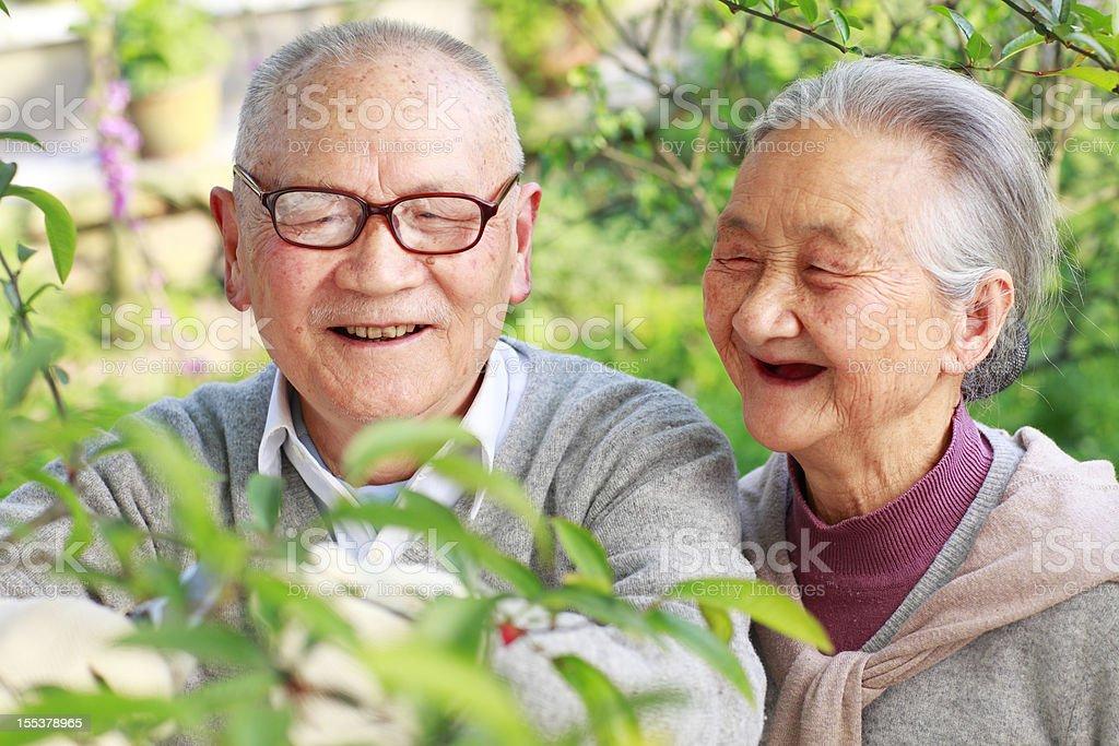 happy senior  couple in the garden royalty-free stock photo