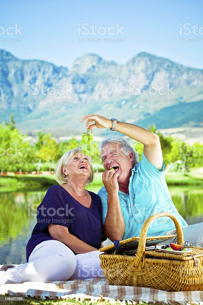 Happy senior couple Outdoor portrait of happy senior couple having picnic by the lake with beautiful mountains view in the background. 65-69 Years Stock Photo