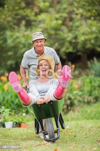 istock Happy senior couple playing with a wheelbarrow 481728022