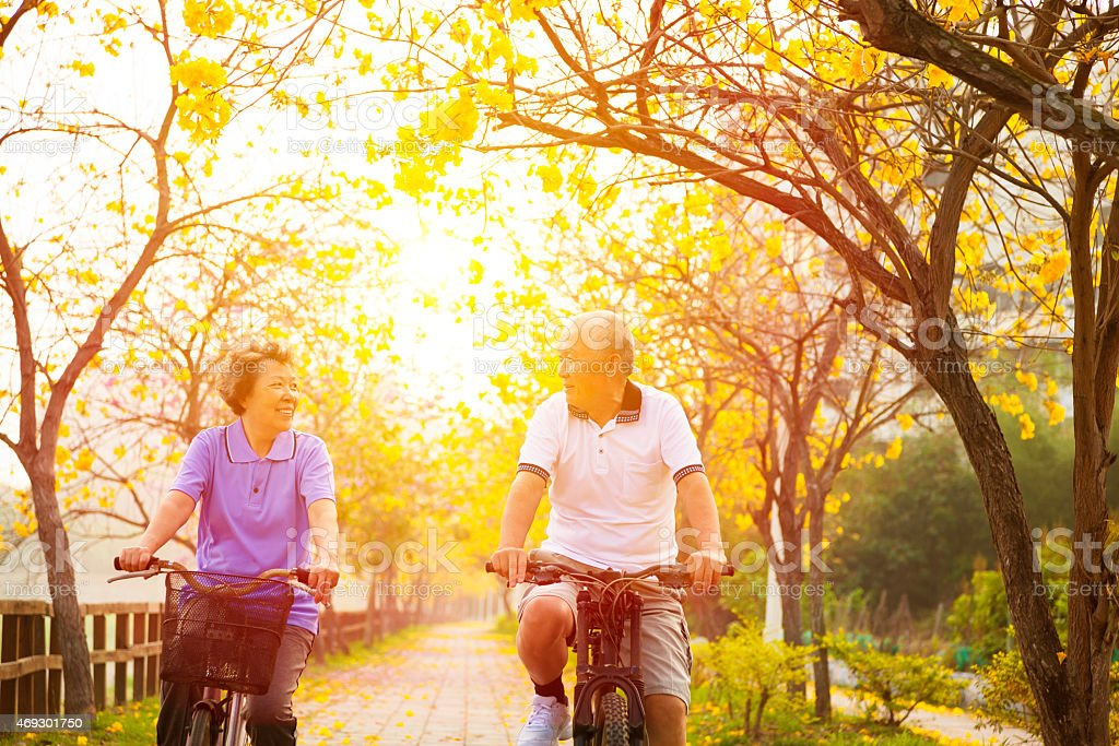 happy senior couple ride on bicycle  in the park stock photo