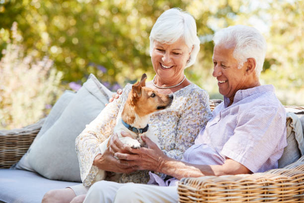 Happy senior couple sitting with a pet dog in the garden stock photo