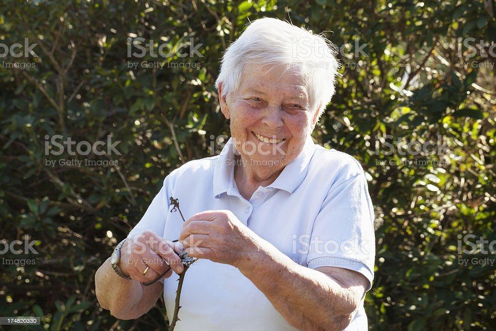 happy senior woman gardening royalty-free stock photo