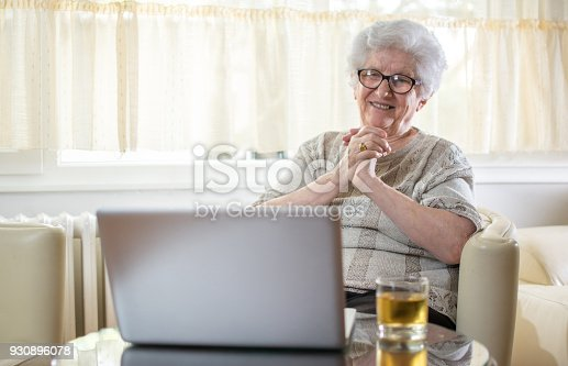 istock Happy senior woman having video call on laptop at home. 930896078
