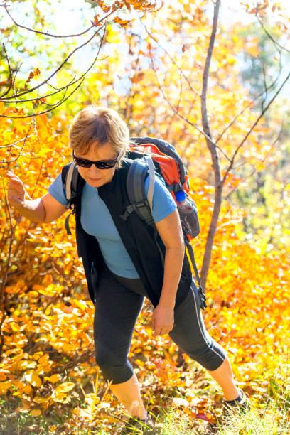 happy senior woman wanderungen in der herbstlichen dämmerung in den julischen alpen, italien, europa - perückenstrauch stock-fotos und bilder