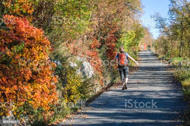 Foto de Mulher Feliz Sênior Caminhadas Ao Amanhecer Outonal Em Alpes Julianos Itália Europa e mais fotos de stock de 55-59 anos
