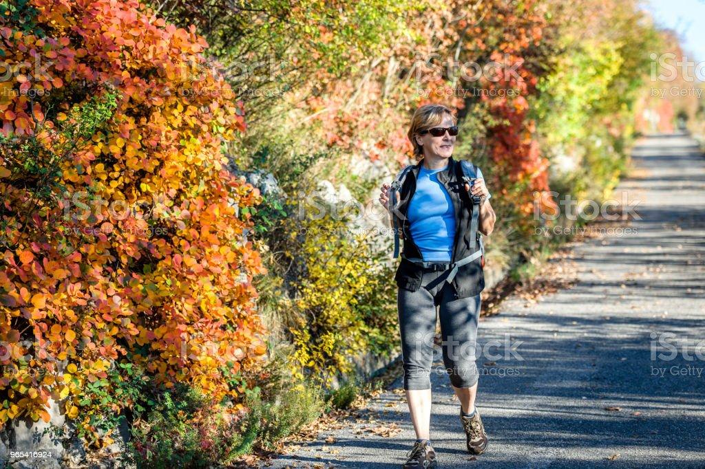 Heureuse femme Senior randonnée à l'aube automnale dans les Alpes juliennes, Italie, Europe - Photo de 55-59 ans libre de droits