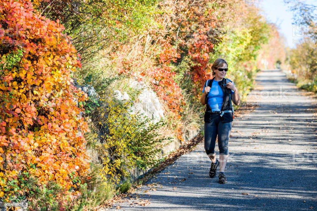 快樂的資深婦女徒步旅行在秋天黎明在朱利安阿爾卑斯, 義大利, 歐洲 - 免版稅55歲到59歲圖庫照片