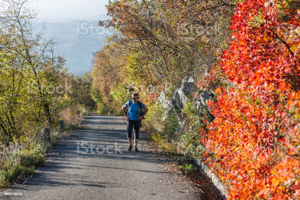 Happy Senior Woman Hiking at Autumnal Dawn in Julian Alps,Italy, Europe royalty-free stock photo