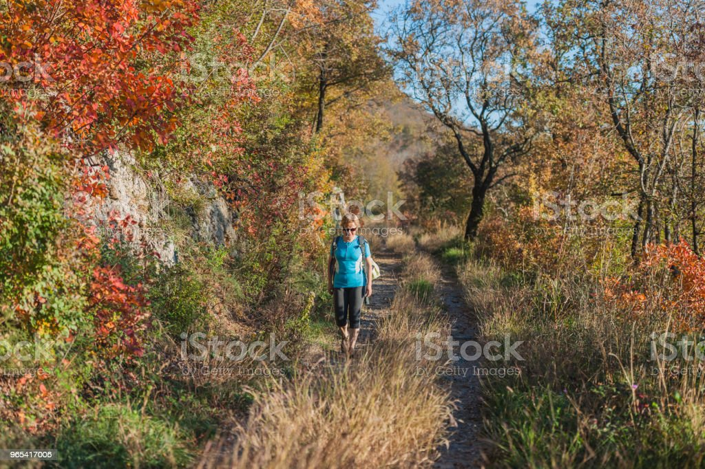 Happy Senior Woman Hiking at Autumnal Dawn in Julian Alps,Italy, Europe zbiór zdjęć royalty-free
