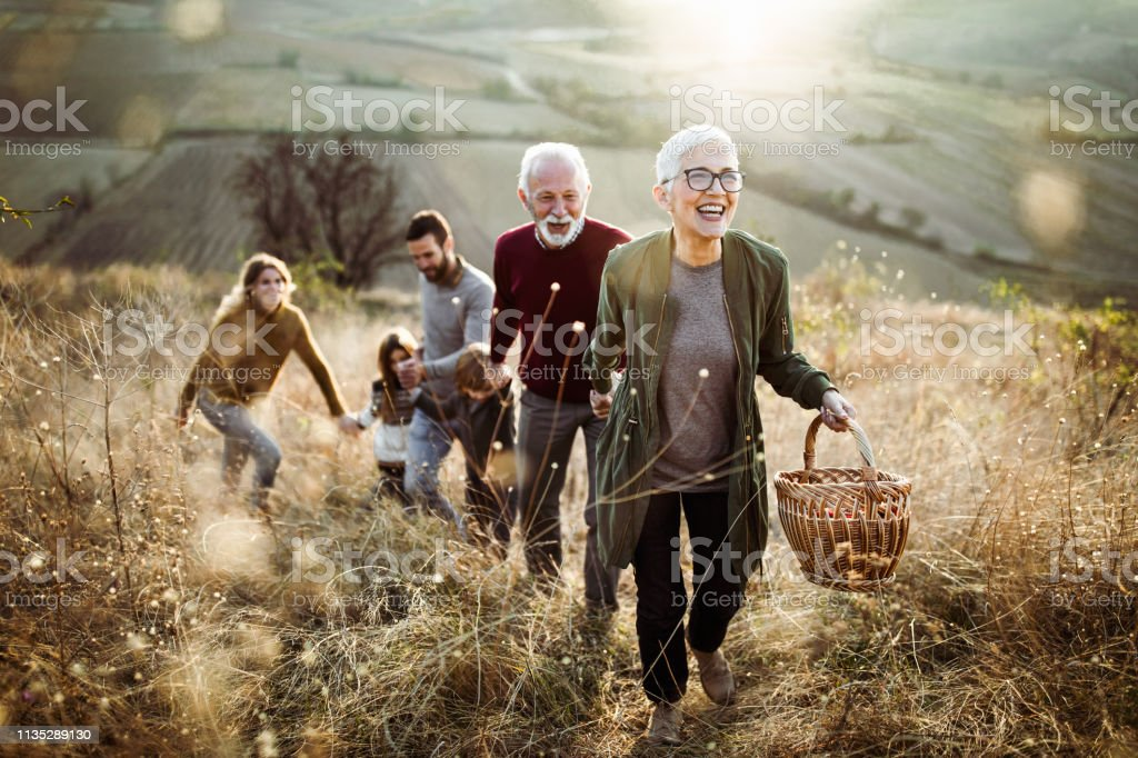 Happy senior woman leading her family to perfect picnic place on the hill. Happy mature woman holding hands with her family while moving up the hill towards their picnic place. Active Lifestyle Stock Photo