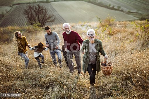 Happy mature woman holding hands with her family while moving up the hill towards their picnic place.