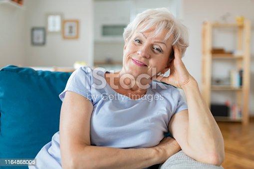 1044149594 istock photo Happy Senior Woman on Couch 1164868005