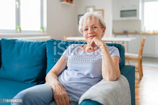 1044149594 istock photo Happy Senior Woman on Couch 1164868025