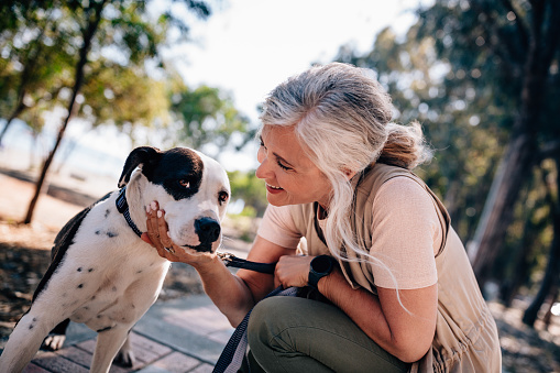 Happy senior woman petting dog during morning walk in nature