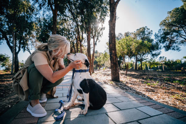 Happy senior woman petting dog during walk in nature picture id979276126?b=1&k=6&m=979276126&s=612x612&w=0&h=vokaqcllqkmmzuxqnuasny jhdcsz0vjpjqdqhd83o8=