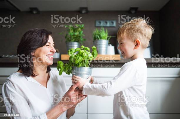 Happy senior woman with a small boy in the kitchen picture id936001440?b=1&k=6&m=936001440&s=612x612&h=myoe19vai5js1nc6pvok1fru d9q3lijx8jl08ls5pc=