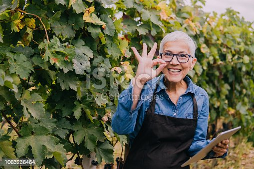 1063236916 istock photo Happy senior woman with a tablet in a vineyard 1063236464