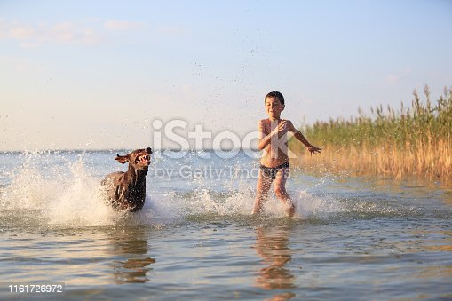 Happy small boy runs, plays with the hunting brown dog in the water. Happy childhood. Nice sunny summer day. Place of resort lake Svitiaz, Ukraine.