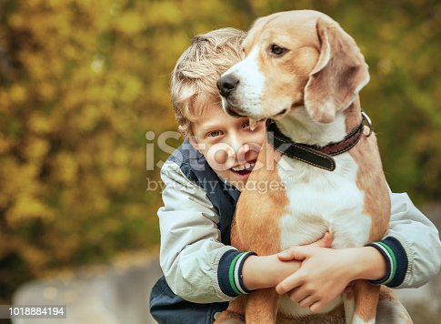 Happy smiling boy hugs his best friend beagle dog
