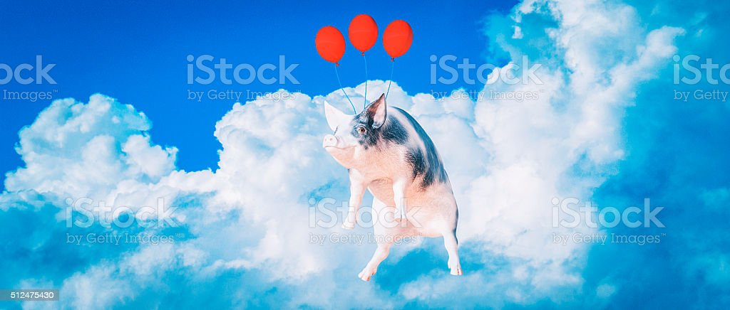 Happy, smiling, flying pig stock photo