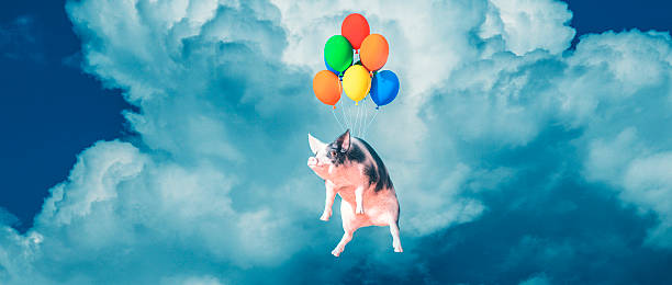 Happy smiling flying pig picture id512477050?b=1&k=6&m=512477050&s=612x612&w=0&h=qs vfmczflxdlex84g7owlmpg0komim0hdaaeaajino=